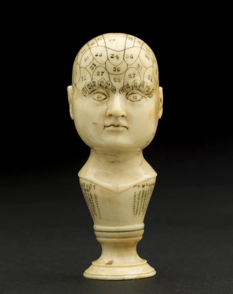 phrenological heads 3